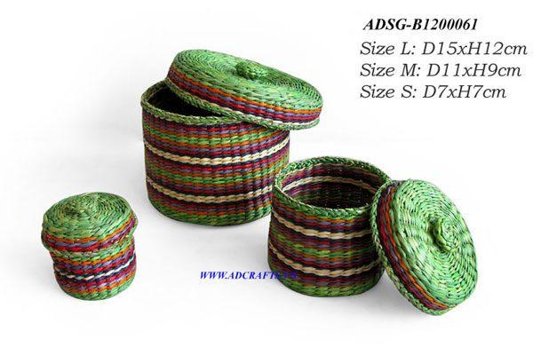 ADSG B12000061