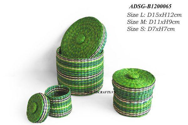 ADSG B1200065